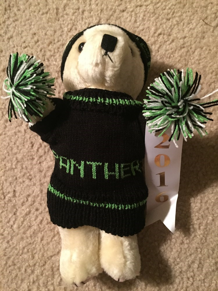 Space Coast Bear - PANTHERS